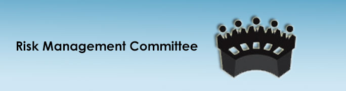 Composition of Risk Management Committee