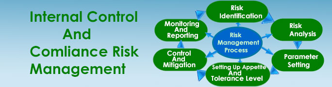 Internal Risk Management